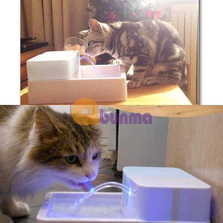 Khay uống nước cao cấp cho Pet (Chó, mèo) có đèn led,  phun, lọc