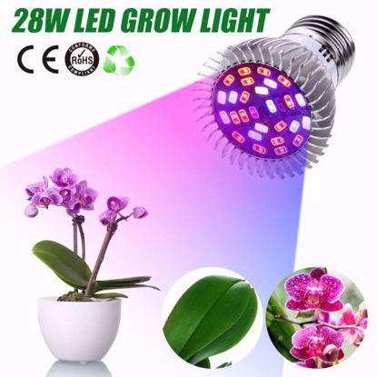 Picture of Đèn trồng cây, Đèn led trồng rau trong nhà, Led grow lights (28W, E27)