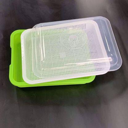 Picture of Khay trồng Rau mầm Thủy canh MAM-103, Chậu trồng Rau mầm 3 lớp có nắp đậy